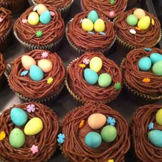 Spring Cupcakes - I love this idea! Spring Cupcakes, Easter Cupcakes, Cupcake Cookies, Holiday Cakes, Holiday Treats, Easter Recipes, Dessert Recipes, Desserts, Opening A Bakery