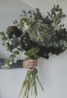 Printing Ideas Useful Beautiful Flowers Pictures Thoughts Flowers Nature, Dried Flowers, Fresh Flowers, Indoor Flowers, Hanging Flowers, Plants Indoor, Wedding Bouquets, Wedding Flowers, Flowers Wallpaper