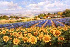 The Art of Paul Guy Gantner Fields of Lavenders & Sun