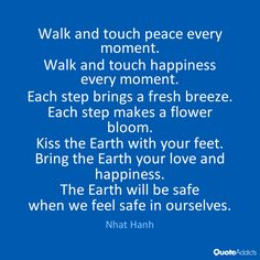 Walk and touch peace every moment.  Walk and touch happiness every moment.  Each…