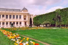 The Jardin des Plantes is the main botanical garden in France. It is one of seven departments of the Muséum national d'histoire naturelle. It is situated in the 5ème arrondissement, Paris, on the left bank of the river Seine and covers 28 hectares (280,000 m²).