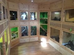 My sanctuary - CaptiveBred Reptile Forums, Reptile Classified, Forum
