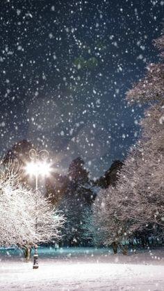 Preview winter, snow, light, landscape