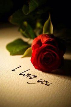 *Te amei muito Te amo muito mas....fim.