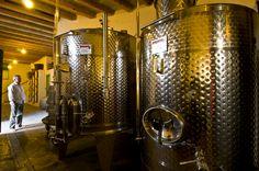 #sunset #sikinos #Sikinosisland #Greece #Island #vacation #oia #Santorini #folegandros #ios #summer #Aegean #Cyclades #weddingideas #decoration #Greecefood #Greecewine #winetourist #greecestagram #travel_greece #loves_greece #ig_greece #igers_greece #greecewine #winesofgreece #instagreece #wine #wines #wineo #vin #vins #vino #sommelier #winetasting #travel Greece Food, Oia Santorini, Greece Travel, Wine Tasting, Weddingideas, Island, Vacation, Sunset, Decoration