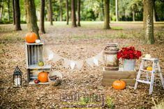 Florida Fall mini-session backdrop setup | Boone Park | Mad Props | Jacksonville Prop and Event Rental | Photography by Corinna Hoffman Photography