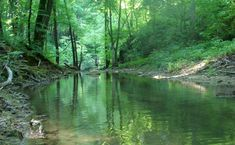 3 lélegzetelállítóan gyönyörű patak hazánkban, amit látnod kell | Femcafe