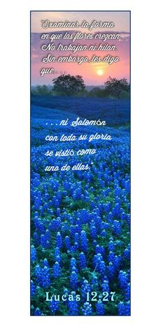 9 best images of free printable religious bookmarks for.html