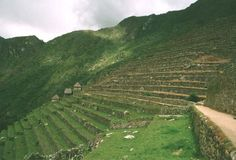Mayan Terrance Agriculture