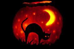 Pumpkin carving patterns pumpkin carvings and free for Cat carved into pumpkin