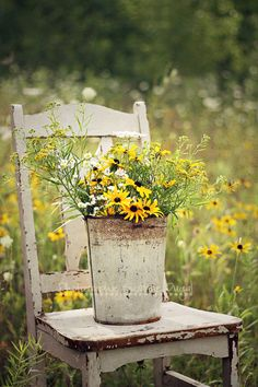Somebody left some pretty sunflowers on Grandma's old chair out in the garden......................