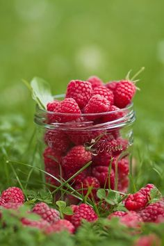 Find images and videos about fruit and berries on We Heart It - the app to get lost in what you love. Red Fruit, Fruit And Veg, Fruits And Vegetables, Seasonal Fruits, Charlotte Au Fruit, Acerola, Fruit Photography, Beautiful Fruits, Beautiful Things