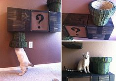 Super Mario Brothers Cat Complex & Other Awesome Cat Furniture From CatastrophiCreations
