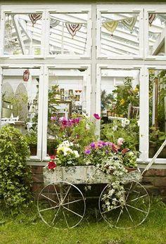 Vintage wheelbarrow and conservatory