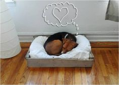 "A frame for your dog's bed: Saw 2 boards into 4 pieces (2 long, 2 short) to make a rectangle. Saw 4 small blocks from the thicker boards found in the middle of the pallet, making them as long as the width of the boards for the bed frame. Nail the widest side to the ends of the shorter boards first, then nail on the longer boards. Use 1-1/4"" common nails, the type with a wide head. Use a quart of cold water for a quick-drying wash. Apply a coat or two of paint with a brush or sponge."