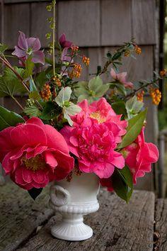 Camelias in urn arrangement