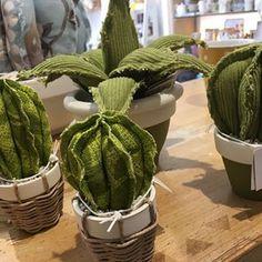 www.movea.it #shoponline #cactus #moveadesign #flowerdesign #homdecor #arredamentodesign #design #home #nature ##handmade #madeinitaly #salento #green #gardendesign #garden #livingroom #indoorplants #plantlife#botanical #cactuslove #cactusgarden#instacactus#urbanjungle#greendesign #greenlove #wedding