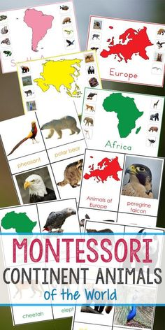 Montessori Animals and Continents Printables, Great Hands-on activities for learning all about animals and continents. Animals continents worksheet, animals and their continents activities, Montessori animals of seven continents, animal continents activity sheets, what animal can be found on every continent, Montessori continents printables #montessori #Montessoriactivities #geography #animalactivities