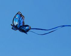 this is so blue and so beautiful... thank you, Jack Wolf, for this lovely kite