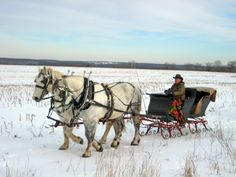 Snuggle up together under warm blankets for a memorable horse-drawn sleigh ride at Allegra Farms in East Haddam. Or, take a look at our Sleigh Rides in Connecticut list featuring great options across the state.