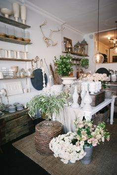 Tucked neatly in between Toronto's best donut shop and one of the most delicious brunch spots around is the sweetest floral shop in all the land. I've had the pleasure of visiting Sweet Wodruff on numerous occasions, and simply couldn't pass