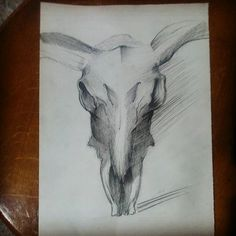 #bull #bullskull #charcoal #horn #wild #powerful #animals #animalskingdom #Iloveanimals #boğa #boğakafatası #karakalem #boynuz #vahşi #güçlü #hayvanlar #hayvanlaralemi #hayvanlarıseviyorum