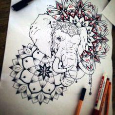 Elephant – 142 фотографии