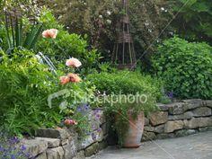kitchen garden wall