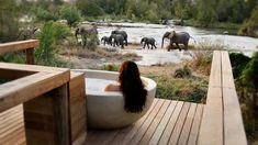The Big 7: SA's top 10 safari lodges in 2019