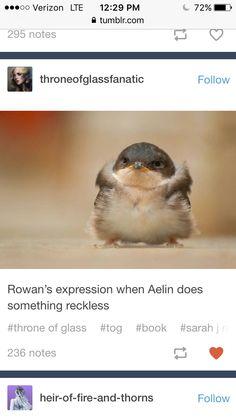 THIS IS SO CUTE IT'S LITERALLY ROWAN
