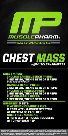Arnold build your chest and back mp workout pinterest nice arnold arms with a twist malvernweather Choice Image