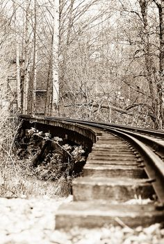 train tracks perfect picture for living room Abandoned Train, Abandoned Places, Locomotive, Old Steam Train, Rail Car, Old Trains, Train Tracks, Train Rides, Train Station
