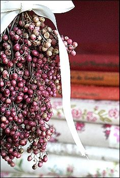 pepperberries - what Scentsy uses to make the Pink Pepper bars www.tanyastrandlund.scentsy.ca
