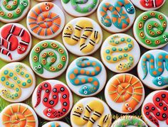 "579 Likes, 25 Comments - Natalia Campbell (@cookielicious_nz) on Instagram: ""Surrounded by snakes #snakes #snakecookies #snakeparty #birthdaycookies #cookieart…"""