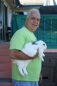 Picking Up Your Pet Rabbit - Small Pet Select | Your #1 Source for Timothy Hay http://smallpetselect.com/