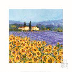 Lavender and Sunflowers, Provence; Hazel Barker (print from art.com)