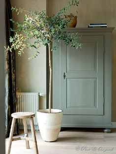 25 Home Decoration Organization and Storage Tips Contemporary interior design – More Interior Trends To Not Miss. The Best of home indoor in Green Furniture, Painted Furniture, Painted Armoire, Painted Walls, Kitchen Furniture, Bedroom Furniture, Home Decor Accessories, Indoor Plants, Interior And Exterior