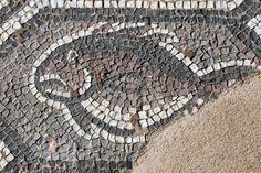 Fish. 5th/6th century AD. http://helenmilesmosaics.org/mosaic-sites/mosaics-of-delphi/