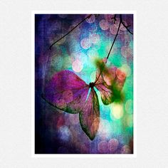 Nature Photogaphy dark purple blue green by moonlightphotography, $26.00