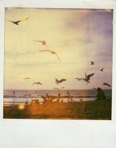 Developed in a Rush: Amazing Photos Taken Using a Polaroid Camera