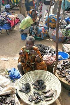 fish vendor, Djenne market, Mali. Photo: hubertguyon, via Flickr