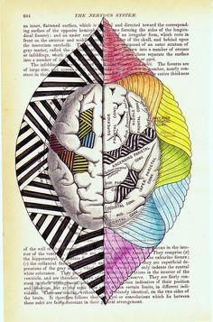 left brain right brain,