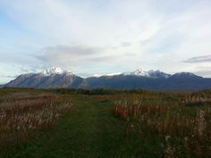 Trail runnin in the fall
