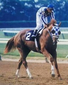 Secretariat - can't see the old videos of his triple crown win in 1973 without getting tears in my eyes....