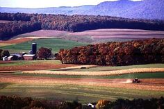 The Federal government provides various grants and grants for loans for farms. Grant opportunities target specific populations and farm-related needs. States governments also participate in farm funding programs.