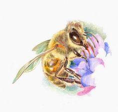 por qué la miel no es vegana?