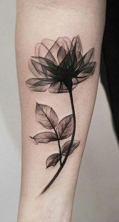 Beautiful Black Magnolia Arm Tattoo Ideas For Women - Watercolor Delicate Forea ., Beautiful Black Magnolia Arm Tattoo Ideas For Women - Watercolor Delicate Forea . - Beautiful Black Magnolia Arm Tattoo Ideas For Women – Watercolor. Trendy Tattoos, Cute Tattoos, Black Tattoos, Body Art Tattoos, 3d Tattoos, Tatoos, Tattoo Drawings, Tattoo Sketches, Black Flower Tattoos