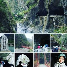 "31 Likes, 4 Comments - YL YL (@yl_singapore) on Instagram: ""Pic 12/22  #台湾 #taiwan #mar2017 #march2017 #tarokonationalpark #taroko #nationalpark #park #scenery…"""