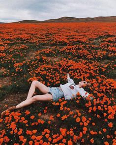Unreal... Antelope Valley заповедник маков в Долине Антилопы - место цветения в апреле начале мая Калифорнийского мака - официального цветка штата Калифорния. Заповедник создан специально для того чтобы сохранить этот красивейший цветок который полностью покрывает все местные равнины. Photo @mvb #womanslook