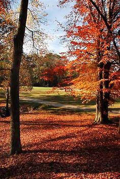 The Colors of Fall - Ideas for Fall Golf Travel